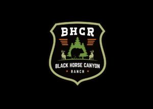 BHCR 47